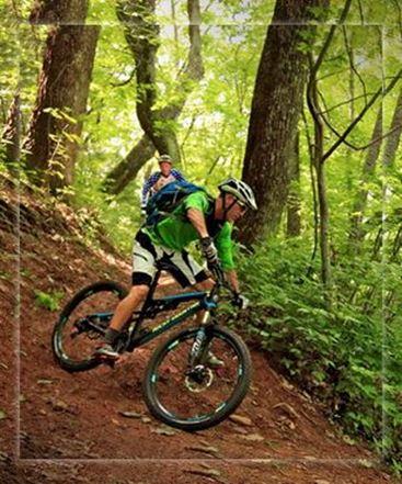 תמונה עבור הקטגוריה אופניים