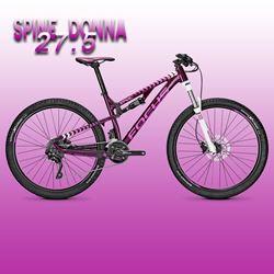 """תמונה של אופני נשים """"27.5 Focus Spine Donna Elite"""