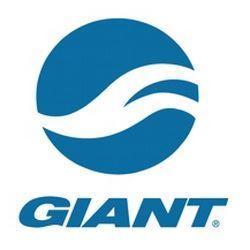 תמונה עבור יצרן Giant