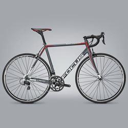 תמונה של אופני כביש Focus Cayo Al 105